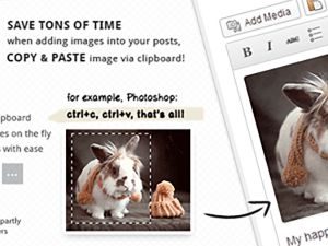 Imagepaste - 粘贴即上传的 WordPress 编辑器增强插件-WP酷